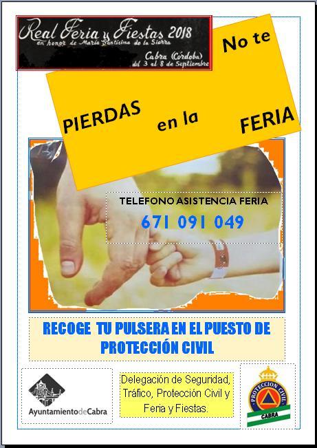 Operativos especiales en materia de seguridad para la Feria de Septiembre